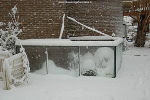 Mijn buitenterrarium, januari 2010