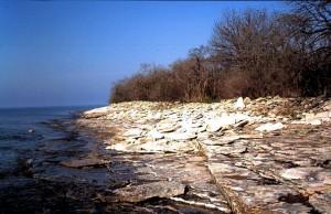 Typische kalkstenen biotoop op Pelee eiland; 7 mei 2005.