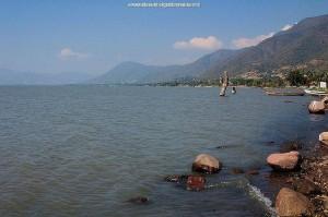 Biotoop van Thamnophis melanogaster canescens: het meer van Chapala, Jalisco, Mexico.