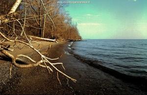 Zanderig stuk kust van Pelee eiland; 7 mei 2005.