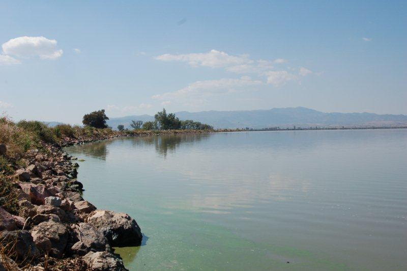 Lago de Magdalena , November 2007. (Steven Bol)