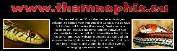 Thamnophis.eu