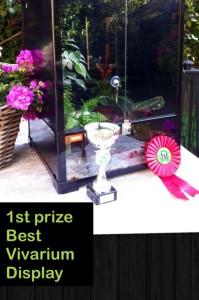 Éérste prijs voor de beste vivarium uitstalling.