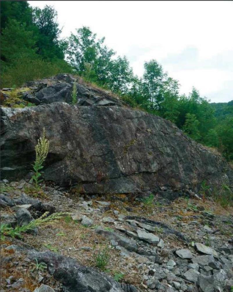 Fig. 11. Rotsplateau, niet ver van de rivier de Cher, Creuse, Frankrijk, waar lege eieren zijn aangetroffen samen met juveniele adderringslangen (Natrix maura) en juveniele gevlekte ringslangen (Natrix helvetica) in een gat in de rotsen (informatie Rob Veen). (Foto Paul Storm, 2017).