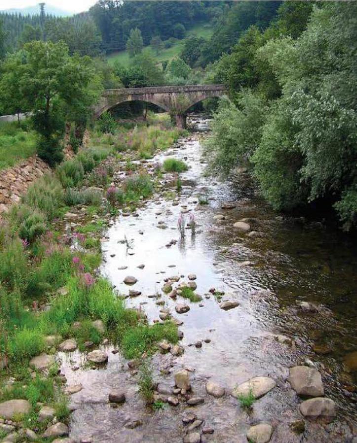 Fig. 4. Rio Nansa, Cantabrië, Spanje, waar de Spaanse ringslang (Natrix streptophora) en de Adderringslang (Natrix maura) zijn aangetroffen. (Foto Paul Storm, 2004).