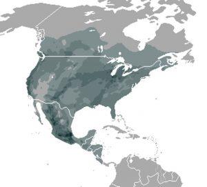 Thamnophis verspreidings gebied